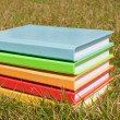 Stack of books laying at grass — Stock Photo #5362453