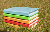 Stack of the books laying at the grass — Fotografia Stock