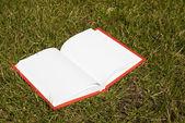 草で敷設ホワイト ページで本を開く — ストック写真