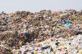 Garbage heap — Stock Photo