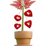 Heart tree — Stock Photo #4610791