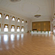Ballroom in Peterhof - Foto Stock
