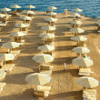 Red Sea Beach - Stock Photo