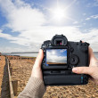 Stock Photo: Sunny camera