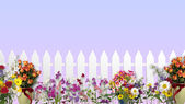 White fence with flowers — Stock Photo