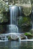 Water fall — Stock Photo