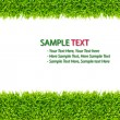 Green Grass frame isolated on white background — Stock Photo #4420903