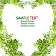 Royalty-Free Stock Photo: Green leave love heart frame on white background