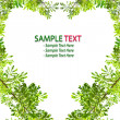 Green leave love heart frame on white background — Stock Photo