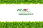 Green Grass frame isolated on white background — Stock Photo