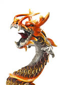 Close up half body of dragon — Stok fotoğraf