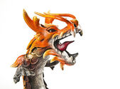 Close up head of orange dragon — Stock Photo