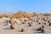 Stone desert in Ischigualasto, Argentina. — Stock Photo