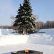Eternal Flame in the Campus Martius, winter. St. Petersburg. Rus - Stock Photo