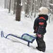 Stock Photo: Little boy rides sled from hill