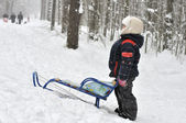 A little boy rides a sled from a hill — Stock Photo