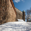 Stok fotoğraf: The fortress stone wall of an old castle on the hill