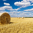 Straw bales in a field with blue and white sky — Stock Photo