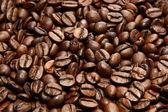 Espressobohnen — Stock Photo