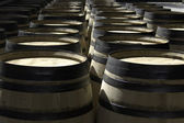 Rows of new barrels for stocking wine — Stock Photo