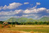 Hut on the green field — Zdjęcie stockowe