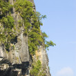 Limestone cliff — Stock Photo