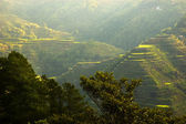 Banaue — Stock Photo