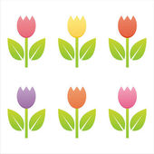 Colorful tulips — Stock Vector