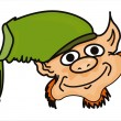Funny leprechaun face — Stockvectorbeeld