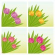 Colorful tulips backgrounds — Stock Vector