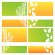 Modern leaves backgrounds — Stock Vector #5264327