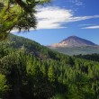 Teide mountain and Orotava valley — Stock Photo