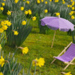 Miniature sunchair and parasol in a daffodil meadow — Stock Photo #4048986