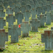 Graveyard for germbombing victims of WWII — Stock Photo #4085340