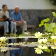 Senior couple sitting at a pond - Stock Photo