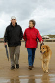 Senior couple with dog on a beach walk — Stock Photo
