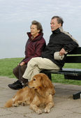 Senior couple with dog on a park bench — Stock Photo