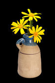 Yellow Daisies in Pottery Vase — Stock Photo