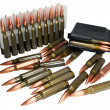 Постер, плакат: Hunting cartridges of caliber 308 Win
