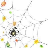 Ragno su un web in autunno — Vettoriale Stock