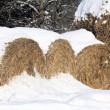 Snow on Hay Bales — Stock Photo