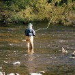 fly fishing — Stock Photo #5368664