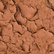 Stock Photo: Arid land