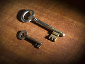 Two old keys — Stock Photo