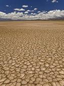 Drought — Stock Photo