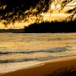 Stock Photo: Kauai Beach