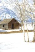 Wyoming barn — Stock Photo