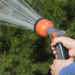 Watering — Stock Photo #3924778