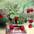 Stock Photo: Wild strawberry bouquet