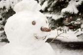 Joyful snowman — Stock Photo